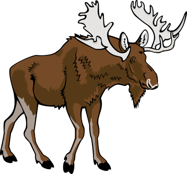 Moose Clipart